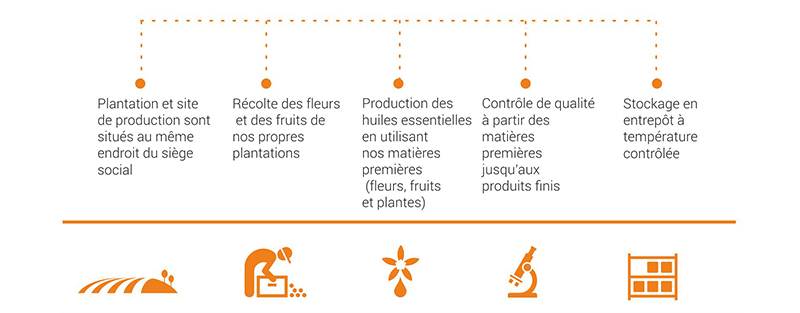 filiera produttiva_fr